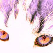 Glowing Cat Eyes Art Print