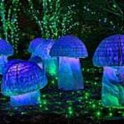 Glowing Mushrooms Art Print