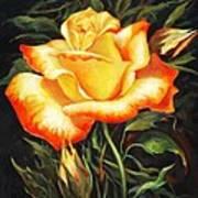 Glowing Rose 2 Art Print