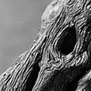Gnarly Tree II Art Print