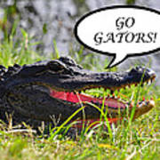 Go Gators Greeting Card Art Print