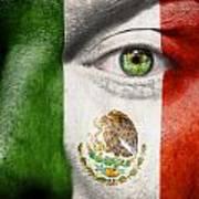 Go Mexico Art Print