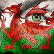 Go Wales Art Print