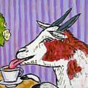 Goat At The Cafe Art Print by Jay  Schmetz