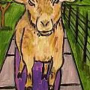 Goat Skateboarding Art Print by Jay  Schmetz