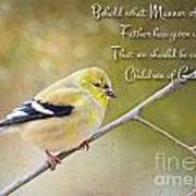 Gold Finch On Twig With Verse Art Print