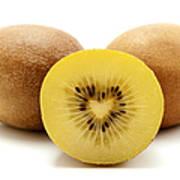Gold Kiwifruit Art Print