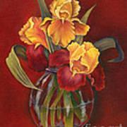 Gold N Red Iris Art Print