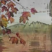 Gold Ridge Maple Art Print by Carolyn Doe