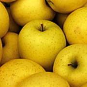 Golden Apples Art Print