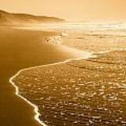Golden Beach 1 Art Print