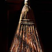 Golden Broom Art Print