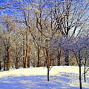 Golden Central Park Art Print