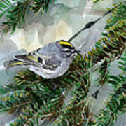 Golden-crowned Kinglet Art Print