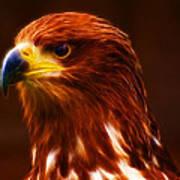 Golden Eagle Eye Fractalius Art Print