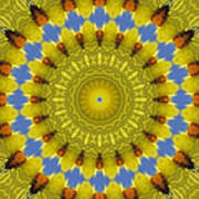 Golden Everlasting Daisy Mandala Art Print