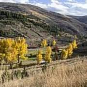 Golden Fall In Montana Art Print