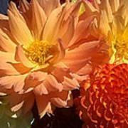 Golden Flowers Upclose  Art Print