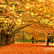 Golden Forest Print by Boon Mee