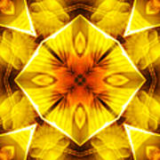 Golden Harmony - 3 Art Print