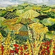 Golden Hedge Art Print