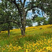 Golden Hillside Art Print by Robert Anschutz