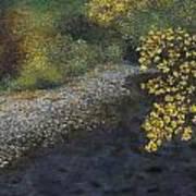 Golden Overhang Art Print