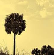 Golden Palm Silhouette Art Print