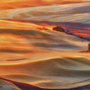 Golden Palouse Art Print