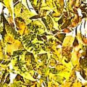 Golden Pecan Leaves Abstract Art Print