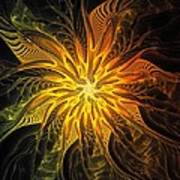 Golden Poinsettia Art Print
