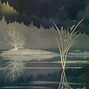 Golden Pond Lily Print by Bedros Awak