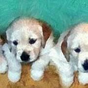 Golden Puppies Art Print