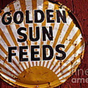Golden Sun Feeds Art Print
