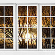 Golden Sun Silhouetted Tree Branches White Window View Art Print