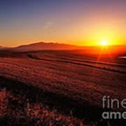 Golden Sunrise Over Farmland Art Print
