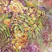 Golden Wattle Art Print