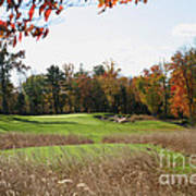 Golf Anyone? Art Print
