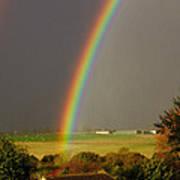 Gonzalo Rainbow Art Print