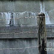 Good Fences Make Good Neighbors Art Print
