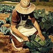 Good Harvest Art Print