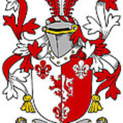 Goodwin Coat Of Arms Irish Art Print