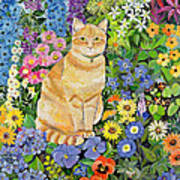 Gordon S Cat Art Print by Hilary Jones