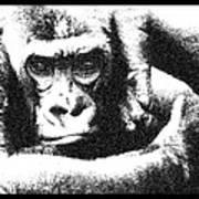Gorilla Vogue Art Print