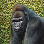 Gorilla With A Hedge Art Print by James W Johnson