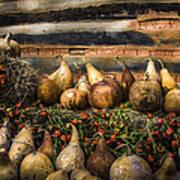 Gourds Art Print by Debra and Dave Vanderlaan