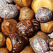 Gourds Galore Art Print