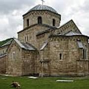 Gradac Monastery Art Print