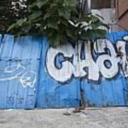 Graffiti-0579 Art Print