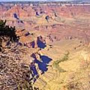 Grand Canyon 41 Art Print